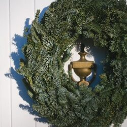 Clearwater Farm Christmas Tree and Wreath Sale